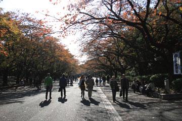 061125_ueno1.jpg
