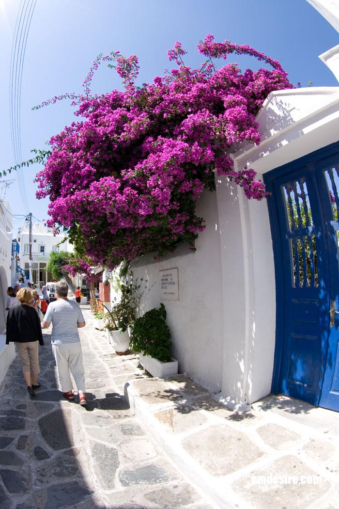 greece1059_cp.jpg